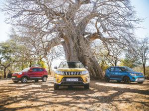 Suzuki | adventure drive | Ignis | Vitara | Spresso